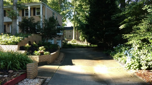 Gardening Blog 2